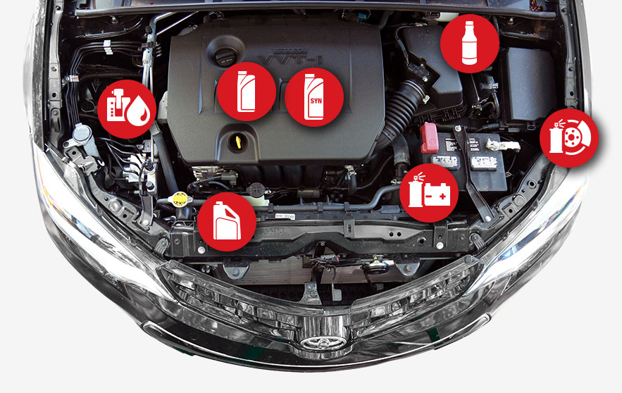 Toyota Service Fluids Information | Manchester TN